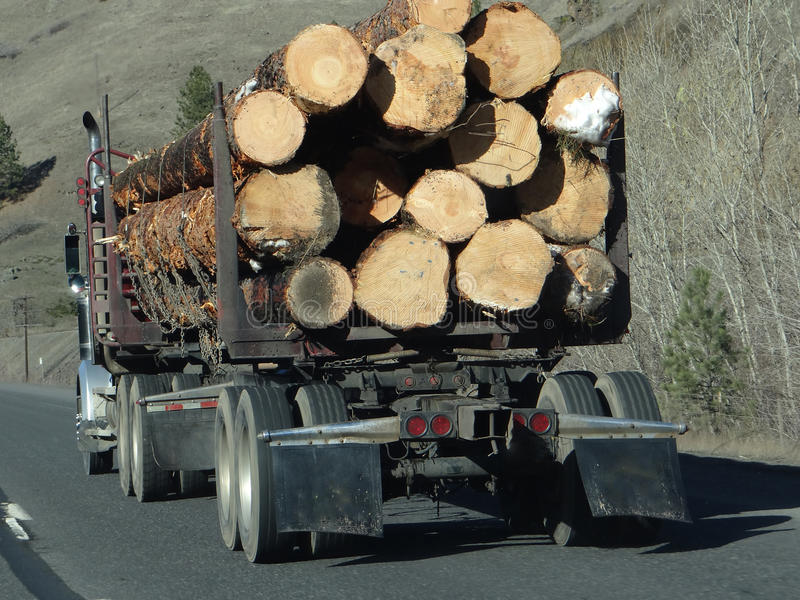 采伐的卡车 免版税库存照片