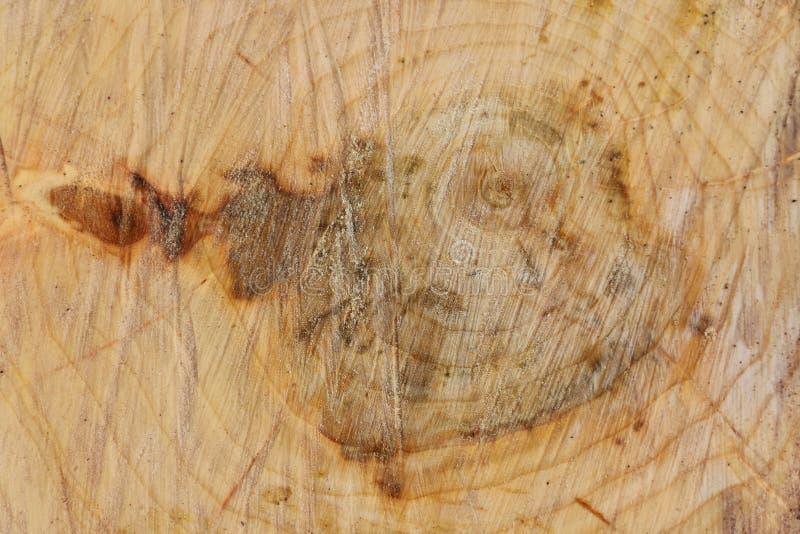 采伐跨的部分-区域锯删节背景的切痕 图库摄影