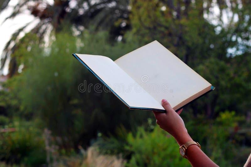 采取书的人 库存照片