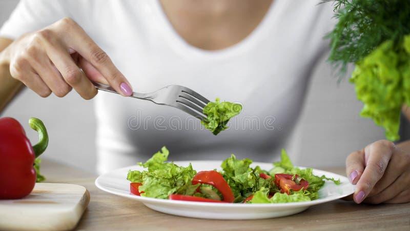 采取从白色板材的主妇绿色莴苣沙拉在厨房,新鲜食品里 图库摄影