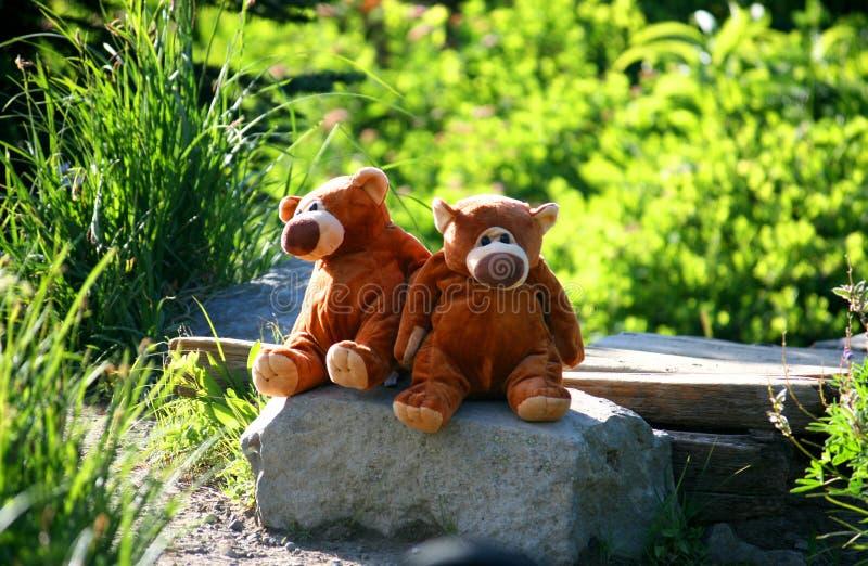 采取休息的两头玩具熊在长的旅途以后 库存照片