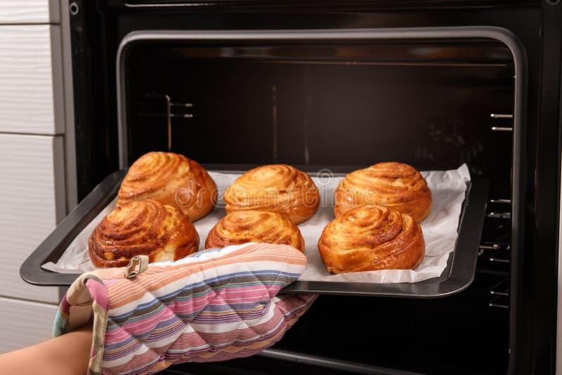 采取新近地被烘烤的小圆面包的妇女在烤箱外面 库存照片