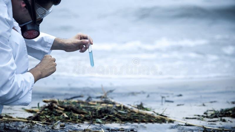 采取水的样品在海滨,卫生问题的科学家由污染导致 免版税库存图片