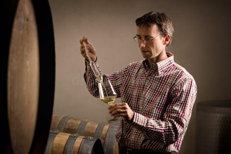采取白葡萄酒的范例葡萄酒商人在地窖里。 免版税图库摄影