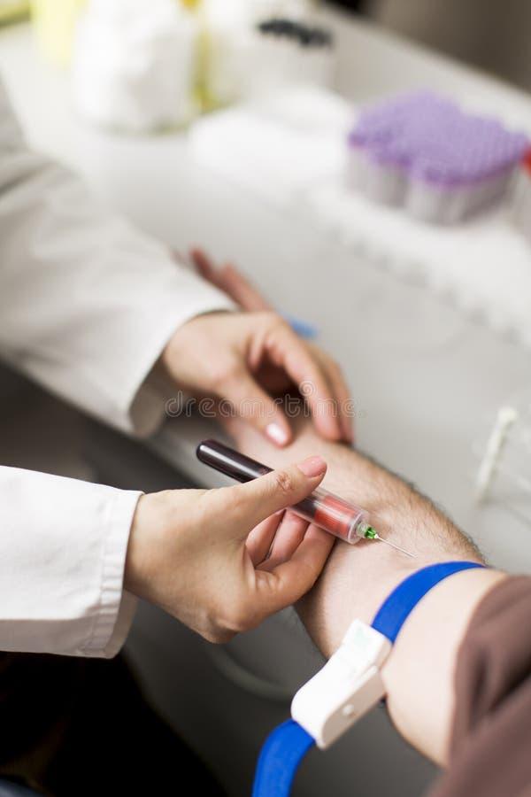 采取血液在实验室 免版税库存照片