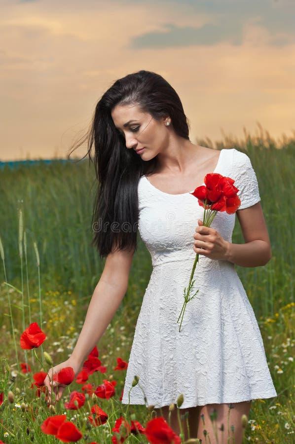 采摘与多云天空的女孩新鲜的鸦片在背景中 美丽的深色的妇女画象充分领域的鸦片 免版税库存照片