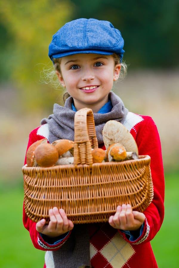 采摘的蘑菇,蘑菇的季节。 免版税库存图片