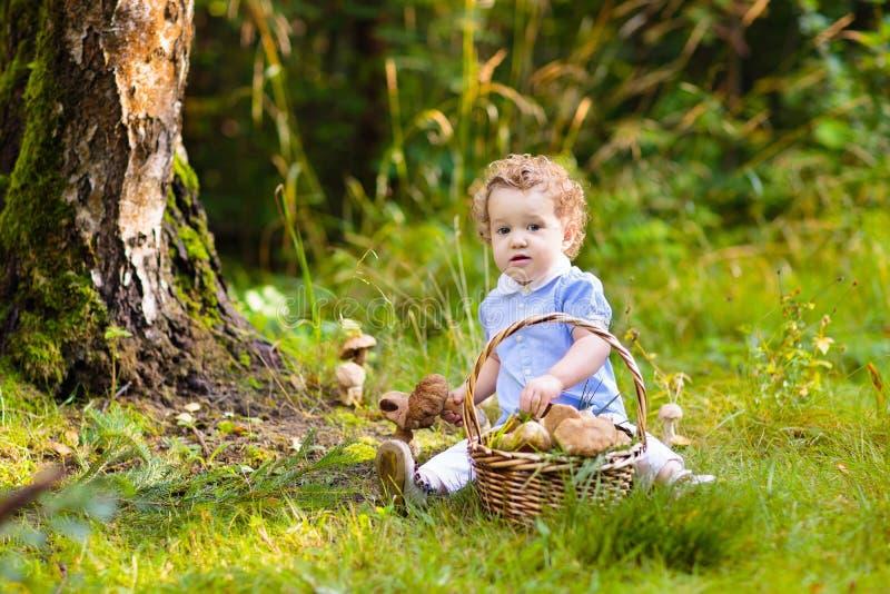 采摘蘑菇的女孩在秋天公园 图库摄影
