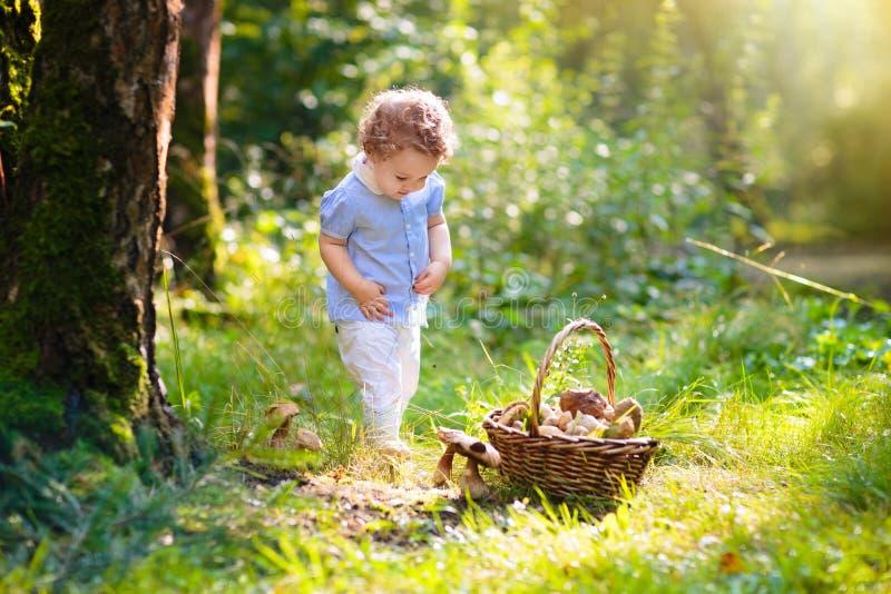 采摘蘑菇的女孩在秋天公园 免版税图库摄影