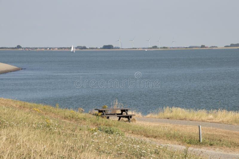 采撷在海岸的裂口桌 库存图片