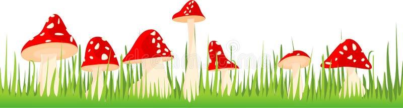 采蘑菇在草的伞菌 库存例证