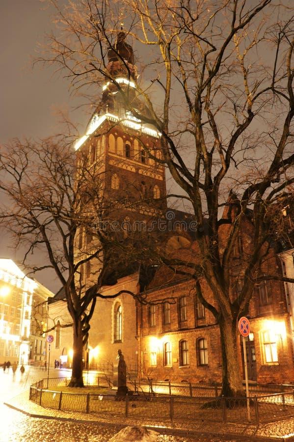 里加大教堂在晚上 库存图片