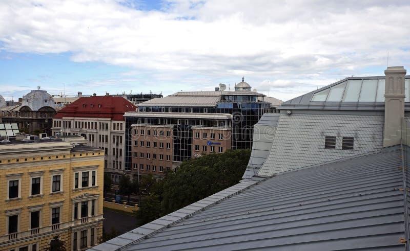 里加屋顶 免版税图库摄影