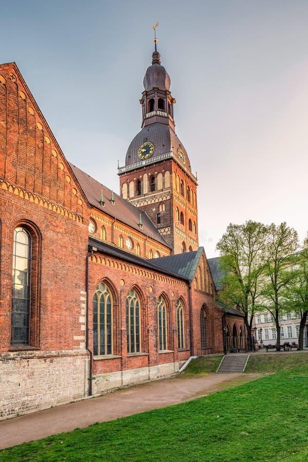 里加老大教堂 库存图片