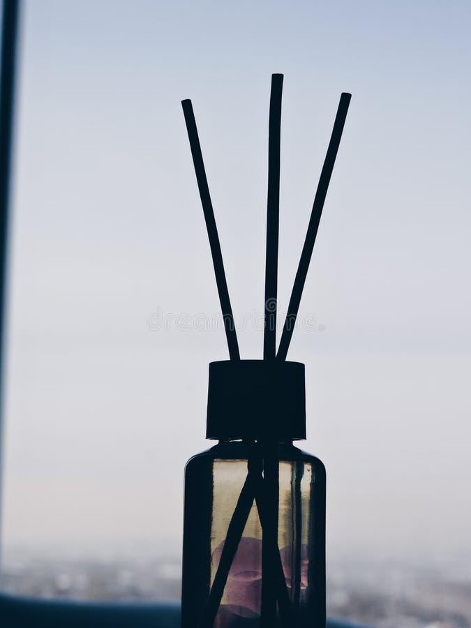 里德清凉剂,关闭 在玻璃瓶的芳香液体用芦苇棍子 r ?? 空气清新剂在家黏附 ?? 免版税库存图片