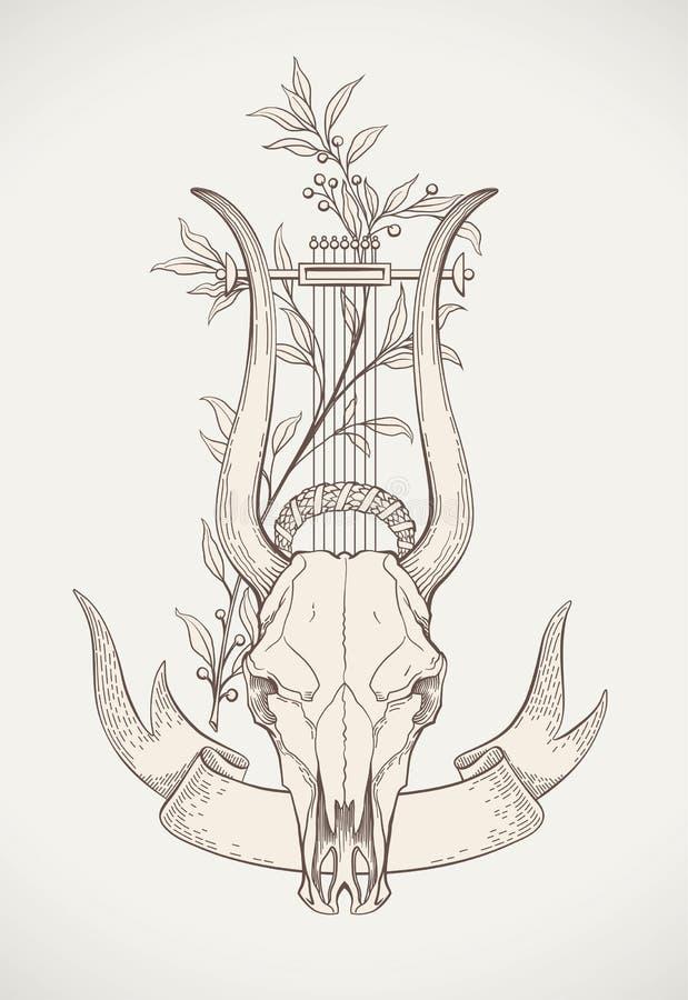 里拉琴垫铁头骨图片