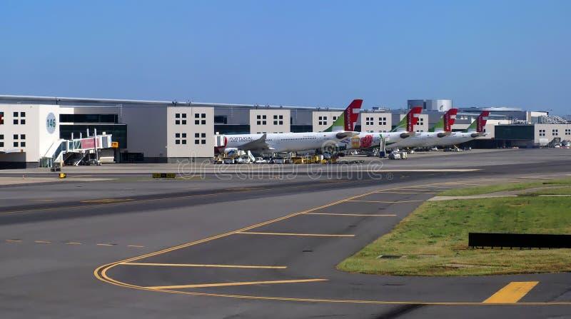 里斯本机场在有轻拍飞机的葡萄牙 库存图片