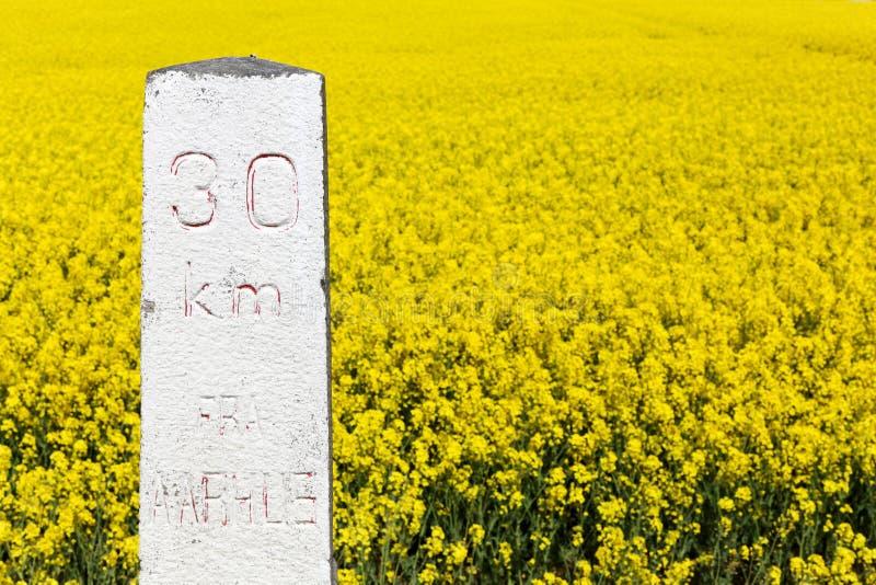 里程碑从奥尔胡斯的30公里有油菜籽领域的在背景中 免版税库存图片