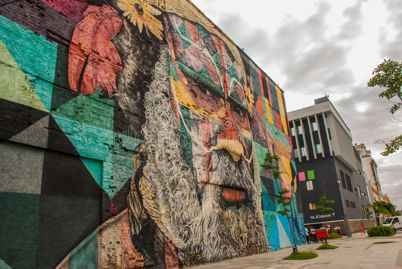 里约热内卢,巴西:在世界的最大的街道画以纪念奥运会在波尔图 大道Olimpico,Las Etnias 库存照片