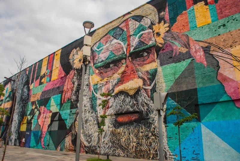 里约热内卢,巴西:在世界的最大的街道画以纪念奥运会在波尔图 大道Olimpico,Las Etnias 图库摄影