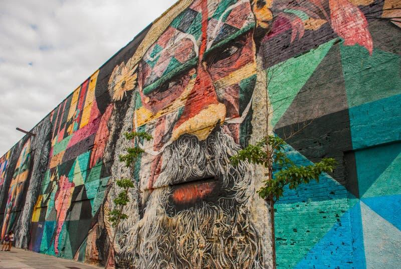 里约热内卢,巴西:在世界的最大的街道画以纪念奥运会在波尔图 大道Olimpico,Las Etnias 免版税库存图片