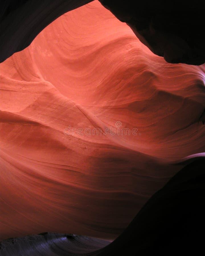 里面13只羚羊峡谷 库存照片