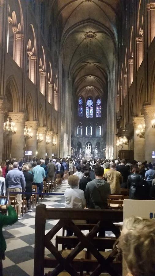 里面Notre Dame巴黎 库存照片