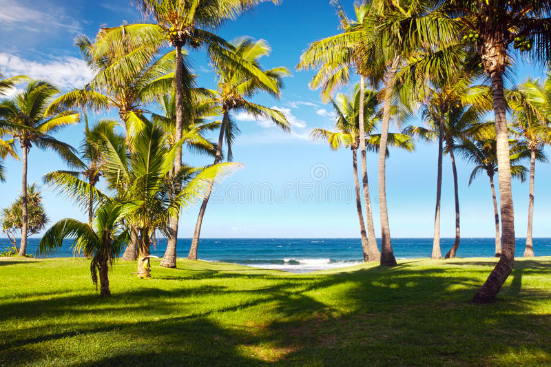 重创anse的海滩 库存照片
