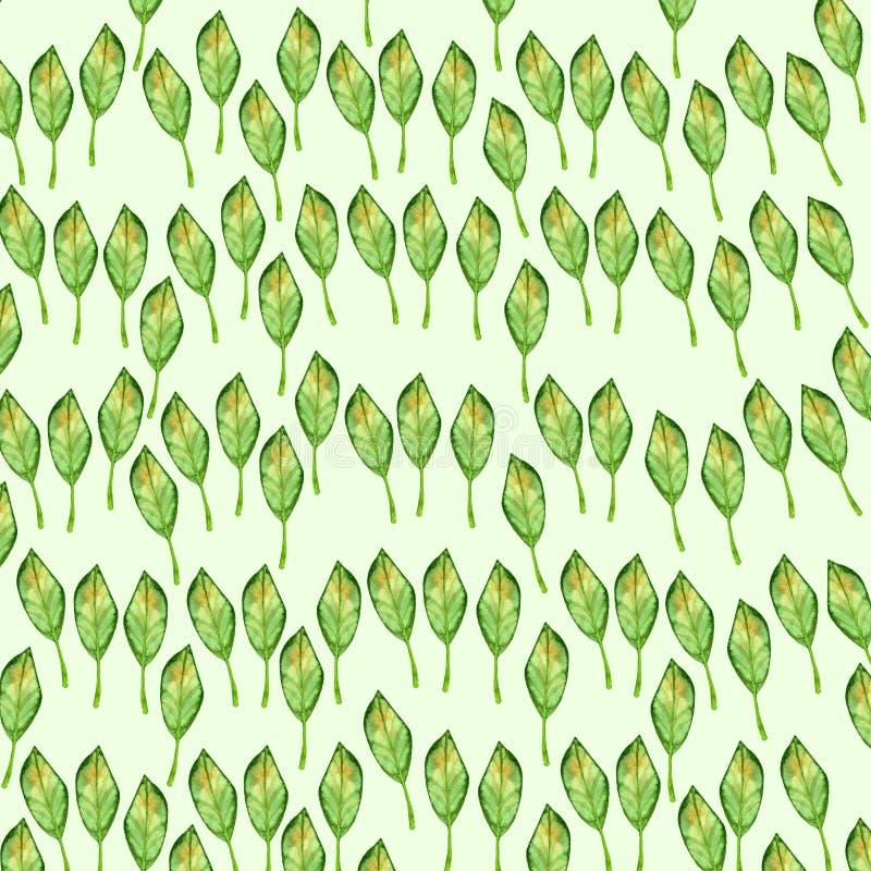 重复绿色有黄色秋天夏天植被自然水彩样式背景的叶子隔绝在白色背景 皇族释放例证