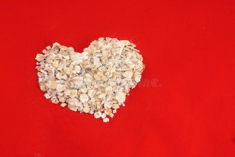 重点燕麦 免版税库存图片
