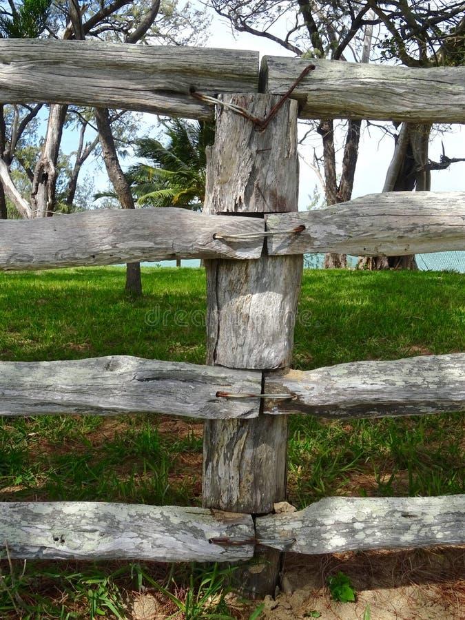 重建您的篱芭1 库存图片