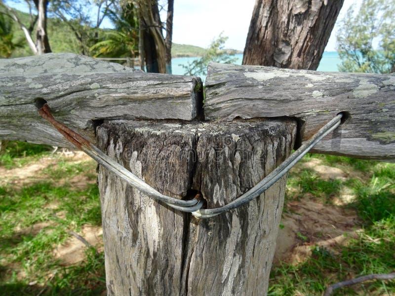 重建您的篱芭3 库存照片