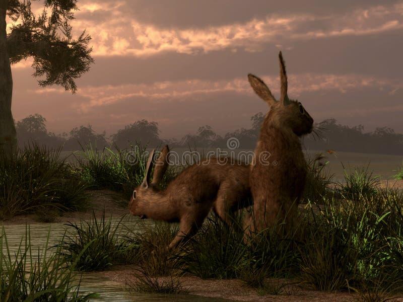 野兔在沼泽地 向量例证