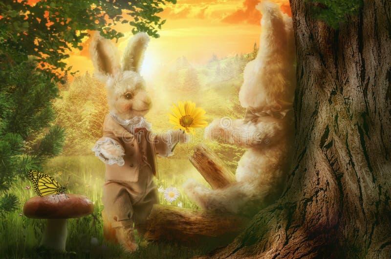 野兔故事,在照片形式拼贴画  库存照片