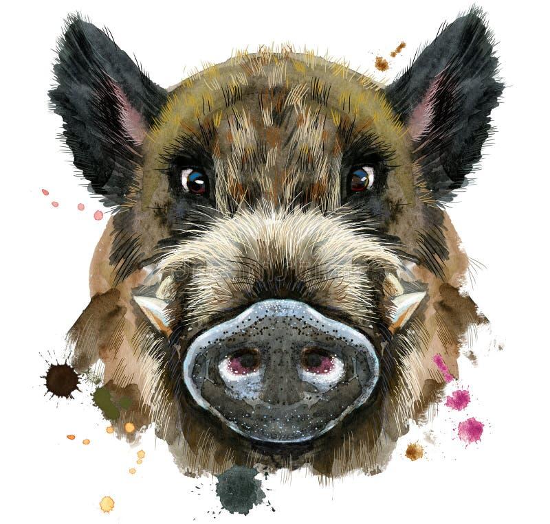 野公猪水彩画象  向量例证