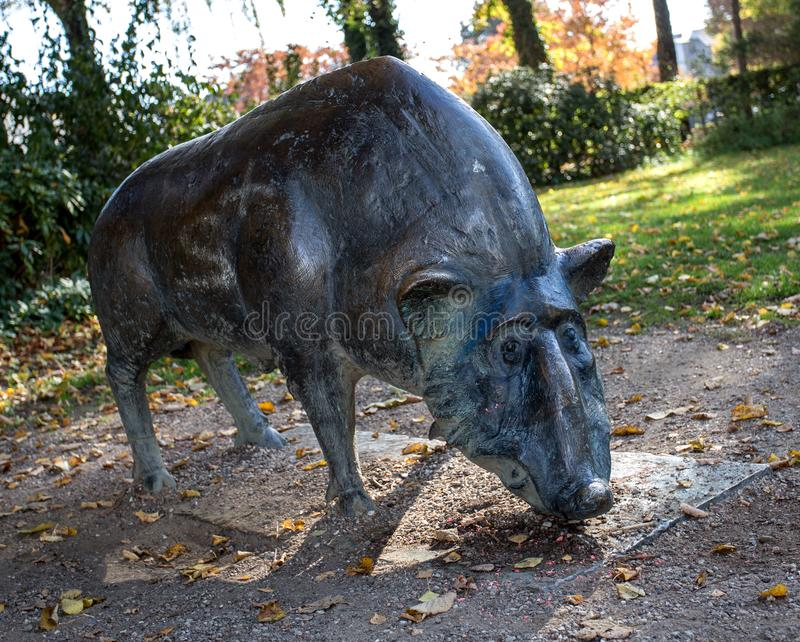 野公猪雕象 免版税图库摄影