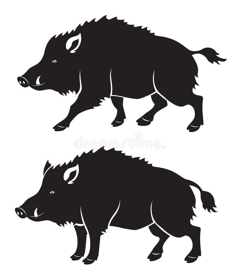 野公猪 向量例证