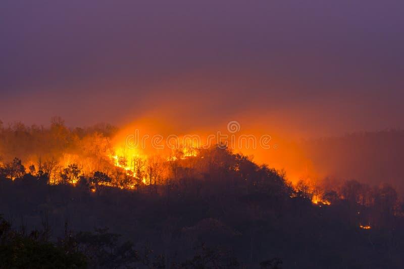 野火在乌汶叻差他尼,泰国 免版税库存照片
