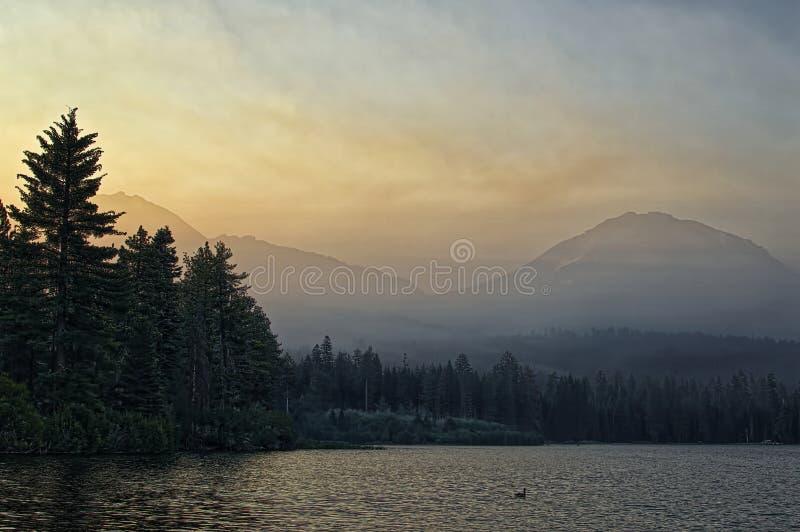 野火烟在黎明,拉森火山国家公园 库存照片