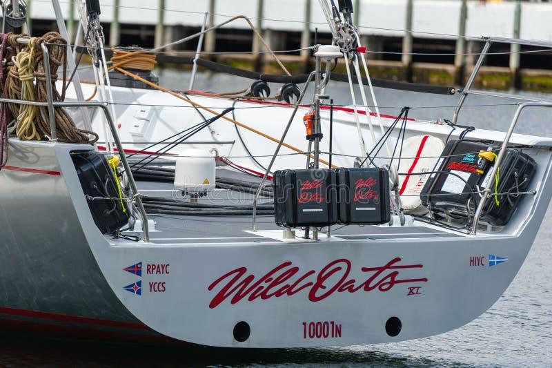 野燕麦XI 11破纪录的胜利在霍巴特游艇况赛的悉尼-科技目前进步水平最大,严厉-另外角度 库存图片