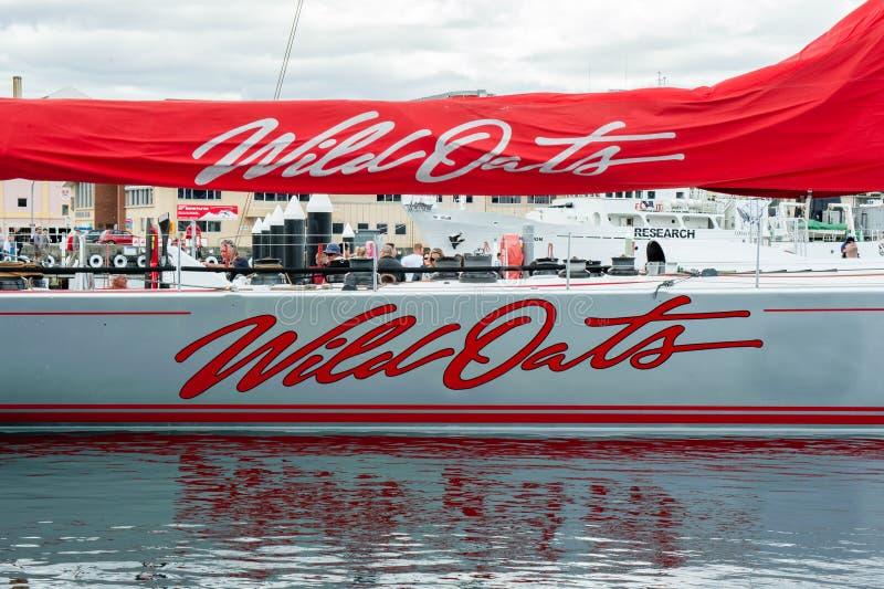 野燕麦XI 11破纪录的胜利在霍巴特游艇况赛的悉尼-科技目前进步水平最大 库存图片