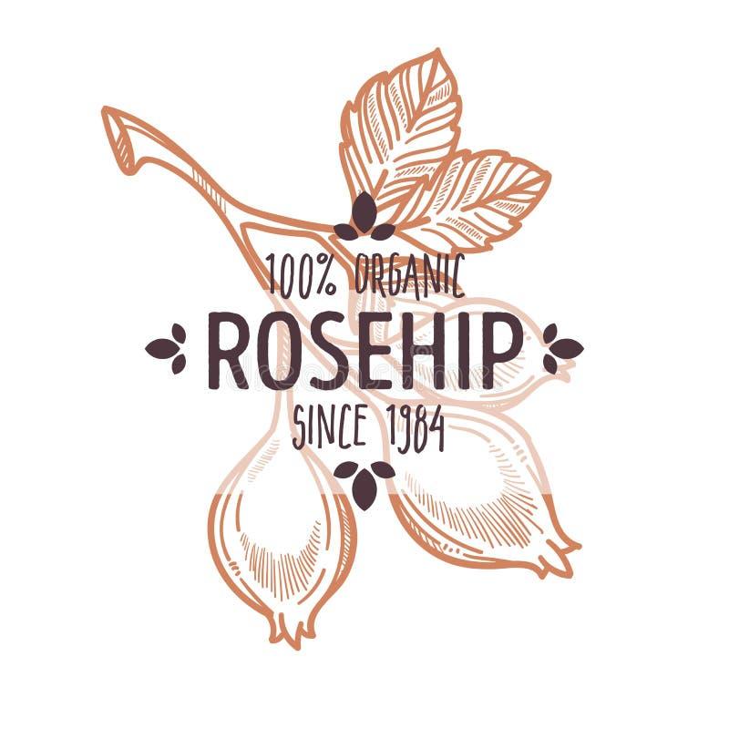 野玫瑰果与在有机农厂食物上写字的被隔绝的象 库存例证