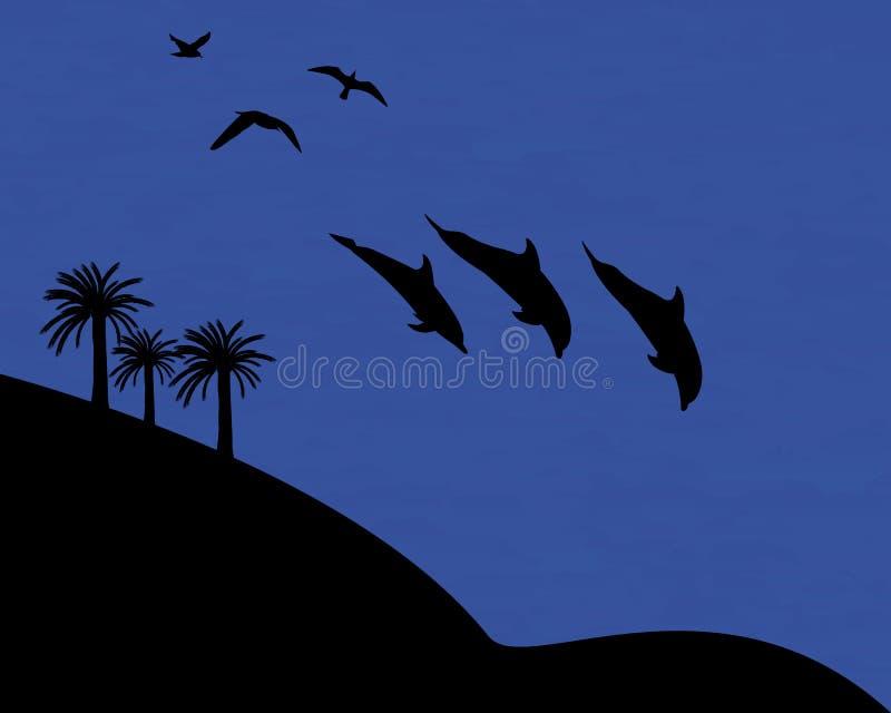 野生生物海豚鸥 向量例证