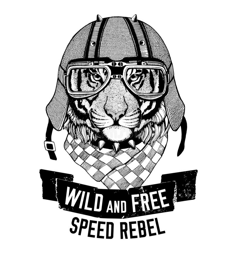 野生老虎野生猫是狂放和自由T恤杉象征,模板骑自行车的人,摩托车设计手拉的例证 向量例证