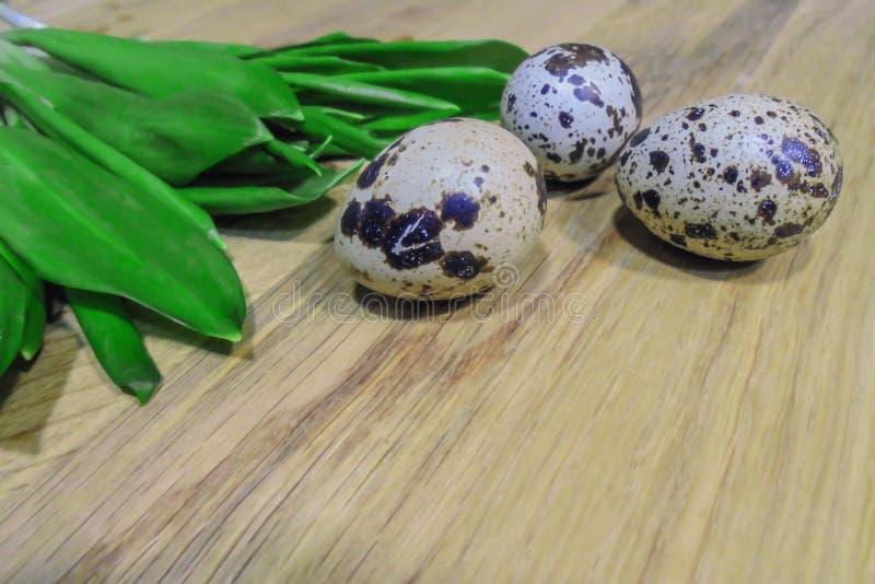 野生蒜和三个鹌鹑蛋绿色叶子木表面上 免版税库存图片