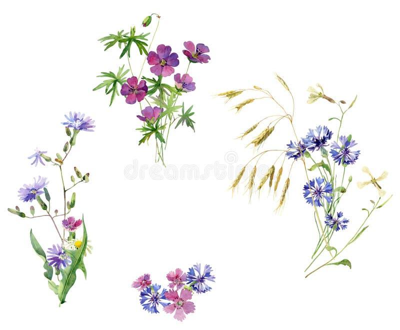 野花两水彩花束  皇族释放例证