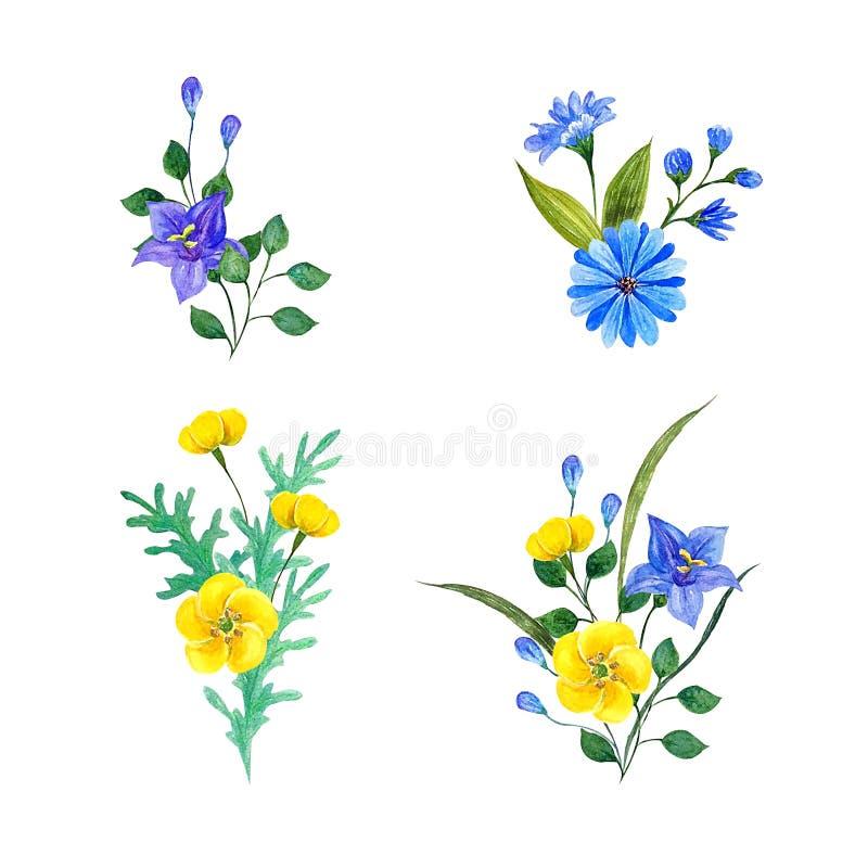 野花水彩构成 拉长的现有量 库存例证