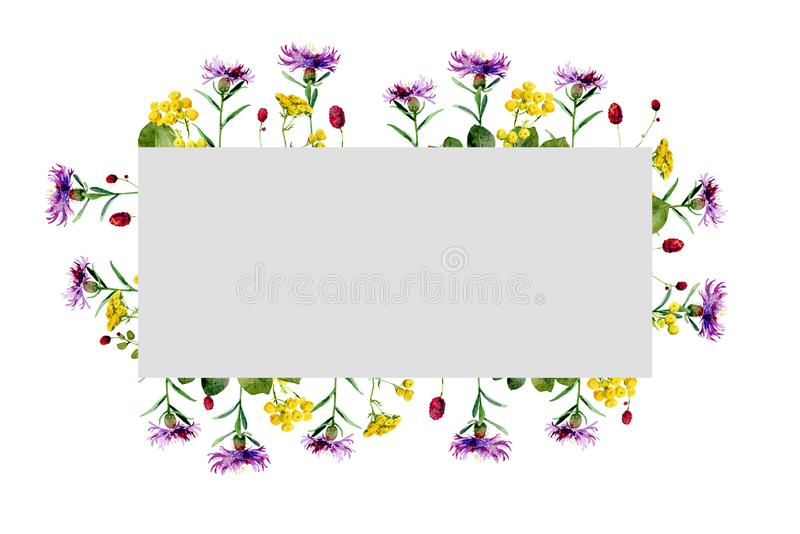 野花水彩长方形框架  皇族释放例证