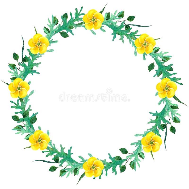 野花水彩wreathWild开花水彩构成 花圈框架 为纺织品设计,包裹,墙纸, porce 向量例证
