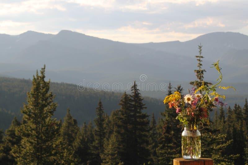 野花瓶子 图库摄影